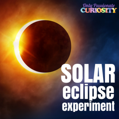 Exploring Lunar and Solar Eclipses