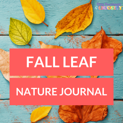 Fall Nature Journaling for Kids: Leaf Journal