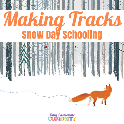 Making Tracks: Snow Day Math