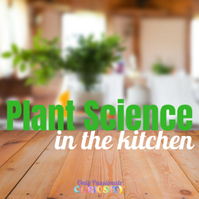 Plant Science –Right in Your Kitchen!