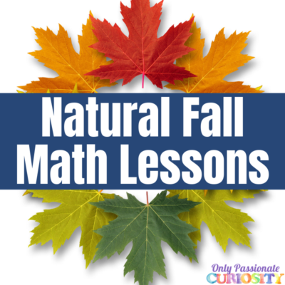 Autumn's Natural Math Lessons