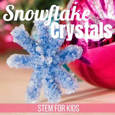 STEM for Kids: Grow Crystal Snowflakes