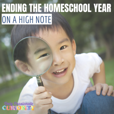 9 Tips for Ending of the Homeschooling Year on a High Note
