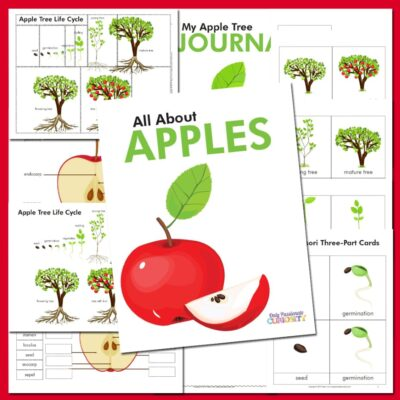 Learning All About Apples