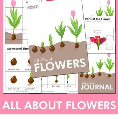 All About Flowers – Unit Study