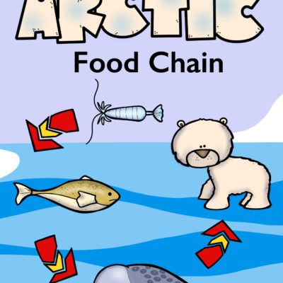 Arctic Food Chain Coloring Book